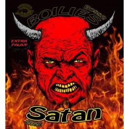 CARP SERVIS VACLAVIK  KULE PROTEINOWE BOSS2  Szatan, 200gr/20mm. 3709